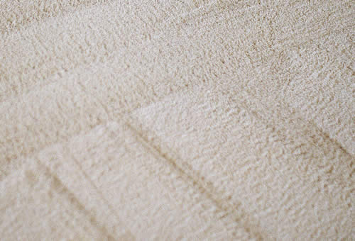 Residential and Commercial Carpet Cleaning Services Waukesha County Wisconsin